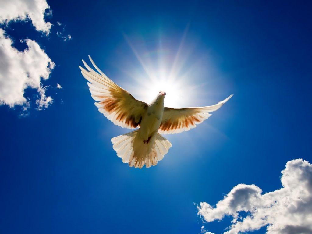 kegyelem 1024x768 - Feledésbe merült spirituális erőforrásunk: a Kegyelem