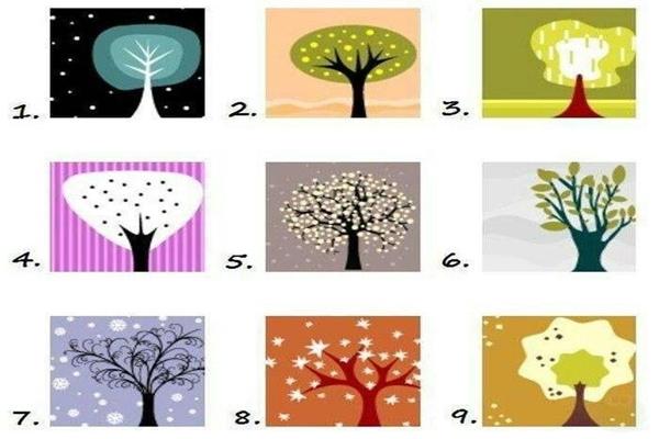 fája - Életed fája: a te személyiségteszted!