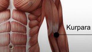 kurpara 300x169 - A hát, a váll és a könyök energiapontjainak kezelése