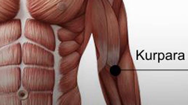 kurpara - A hát, a váll és a könyök energiapontjainak kezelése