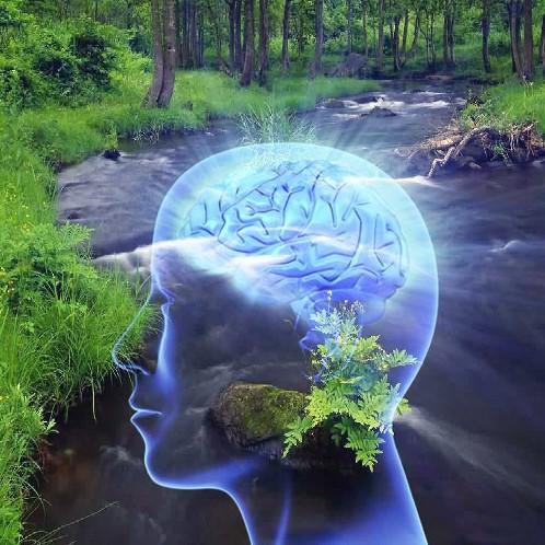 agy - Az emberiség 12 negatív gondolati programjának testi hatásai