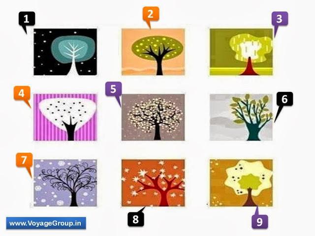 fák - Válassz egy fát, és nézd meg mit árul el rólad! Nagyon igaz!