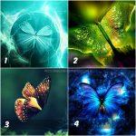 pillangók kész 150x150 - Válassz egy pillangót, és nézd meg mit árul el rólad! Nekünk teljesen igazat mondott!