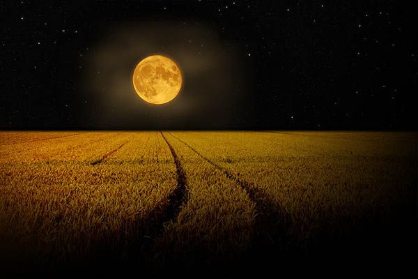 elengedés - Angyali üzenet szerdára: Elengedés a Teliholddal - május 11 százszoros teremtő nap!