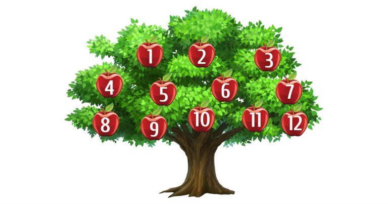 mágikus - Válassz egy számot, és nézd meg mit mond neked a mágikus fa! Nem fogsz csalódni