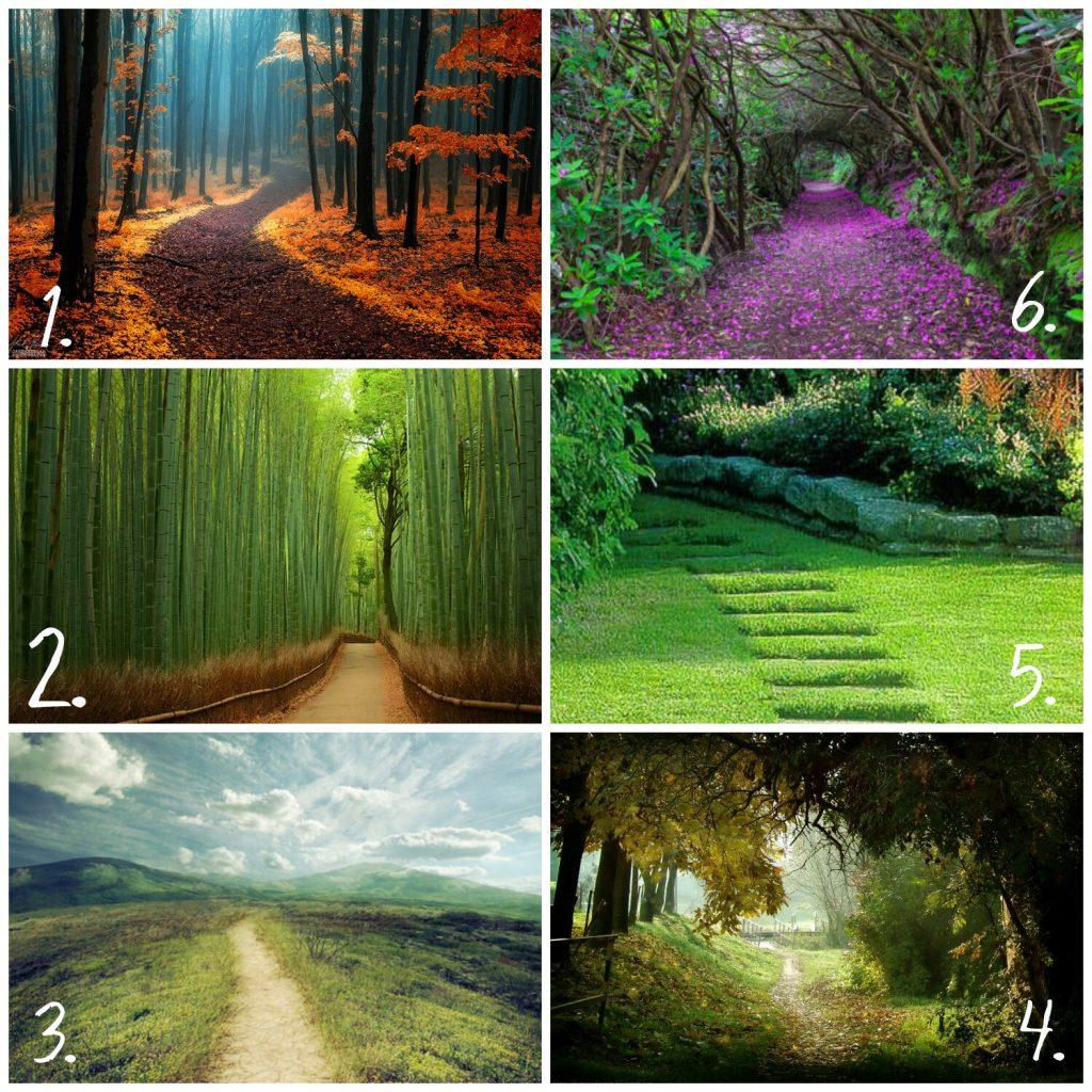 svényt 1024x1024 - Válassz egy ösvényt, és nézd meg merre tart az életed!