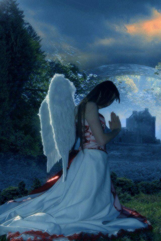 szeretetet2 - Univerzum üzenete a mai napra: CSAK A SZERETETET LÁSD!