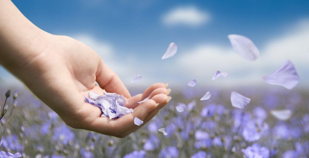 teremtés 1024x524 - Az Univerzum üzenete a mai napra: Valóra váló álmok! Az az élet, amelyről álmodtál, most valósággá válik számodra. A megerősítéseid és imáid, az álmaid elképzelése és más pozitív gyakorlatok valóra váltották az álmaidat.