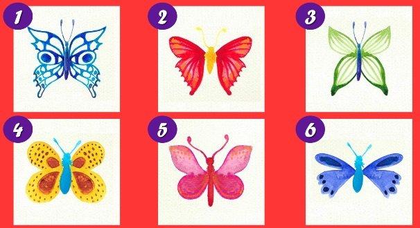 választásod - Újabb önismereti teszt a javából - válassz egy pillangót, választásod sokat elárul rólad