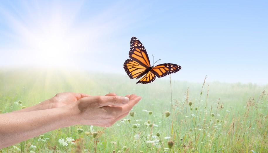 elengedés3 - Angyali üzeneted keddre: Elengedés - Tárd szét karjaid, és engedd el azokat a kihívásokat, amelyeket kezeddel oly erősen magadhoz szorítottál. Nyisd ki kezedet, tárd ki karodat és szívedet szeretetünk és támogatásunk előtt.