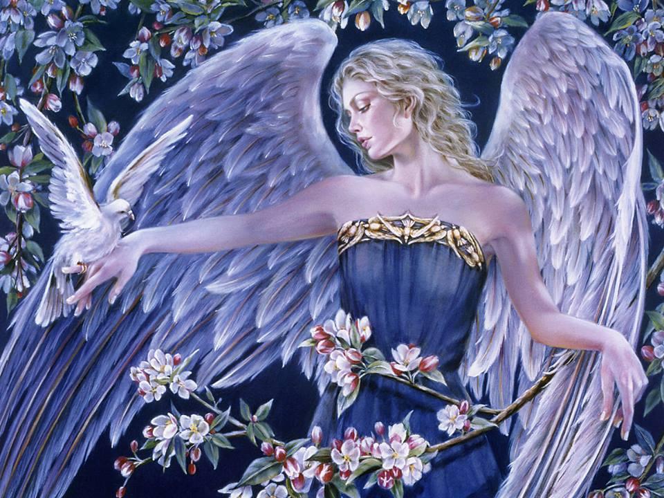rendet1 - Angyali üzeneted péntekre Örömvirágtól: Hold a Szűzben, rakj rendet!