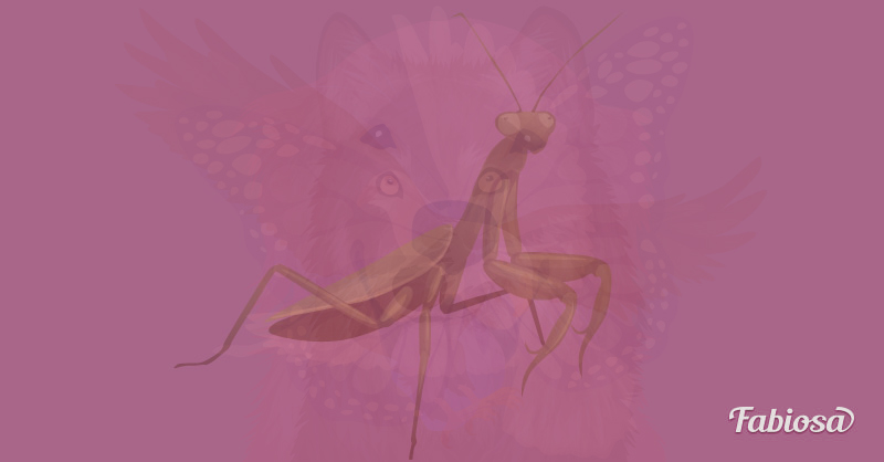 llat7 - Melyik állatot látod meg először ezen a képen? A válaszod felfedi a lelked legmélyebb vonásait!