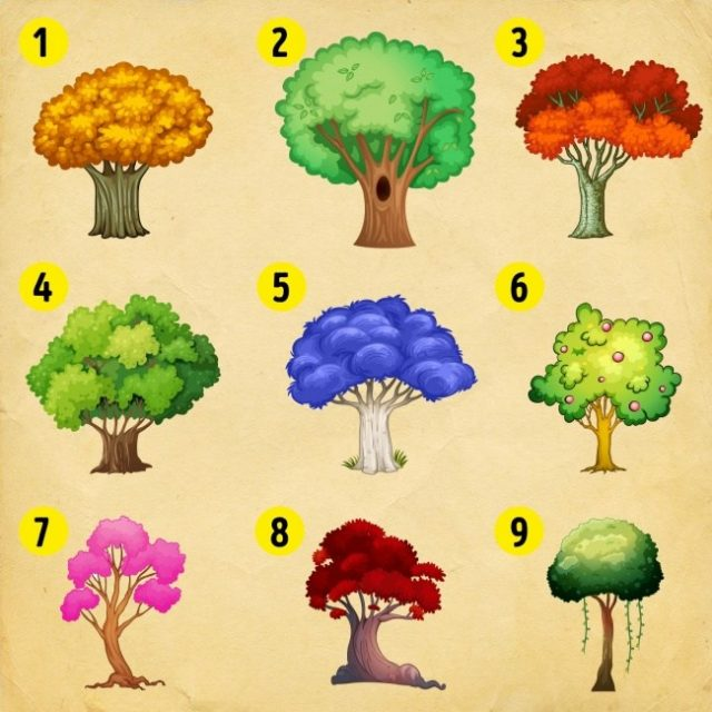 megtudhatod - Pszichológiai teszt! Csak válassz egy fát, és megtudhatod, hogy mi vár rád ebben az évben!