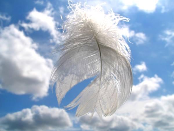 kezdetek - Angyali üzeneted péntek éjszakára: Teljesítjük a titkos álmaidat, amelyeket rég óta őrzöl