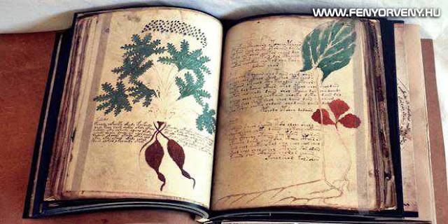 Voynich - A középkor legtitokzatosabb irománya, a Voynich-kézirat