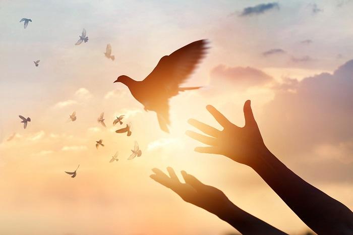 Stresszűző - Vasárnapi angyali üzeneted: Folytatódnak az érzelmes napok