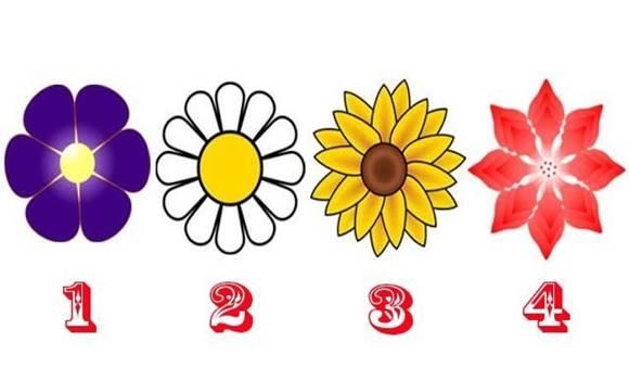kiválasztott - A kiválasztott virág üzenet egy angyaltól – Csodálatos teszt