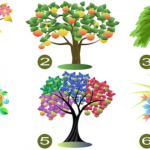 jellemez 150x150 - Egy teszt ami úgy jellemez téged, amilyen vagy! Válassz egy fát és ismerd meg jobban önmagad!