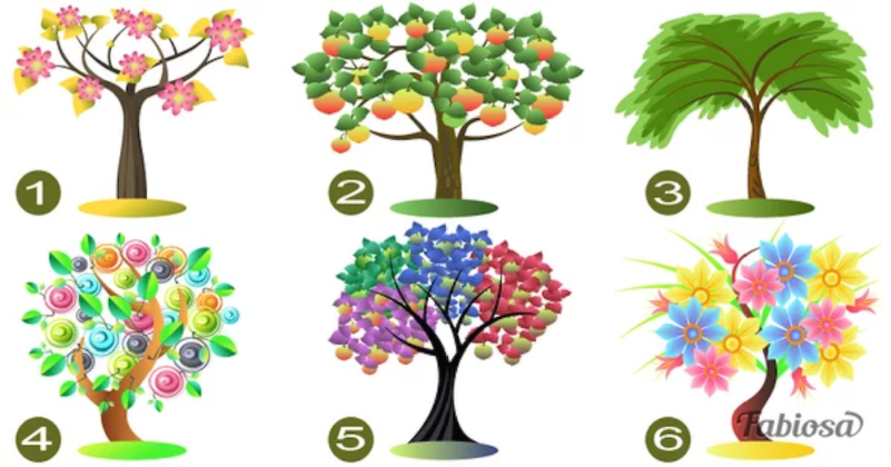 jellemez - Egy teszt ami úgy jellemez téged, amilyen vagy! Válassz egy fát és ismerd meg jobban önmagad!
